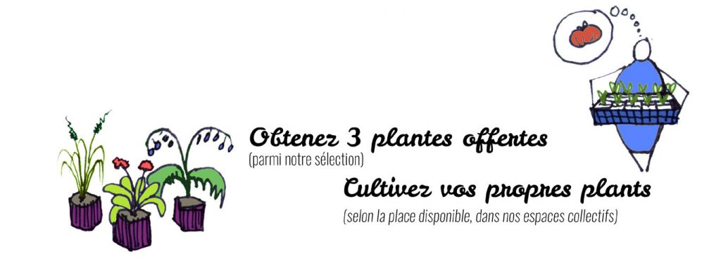 PP_offre_pepin_le_grand