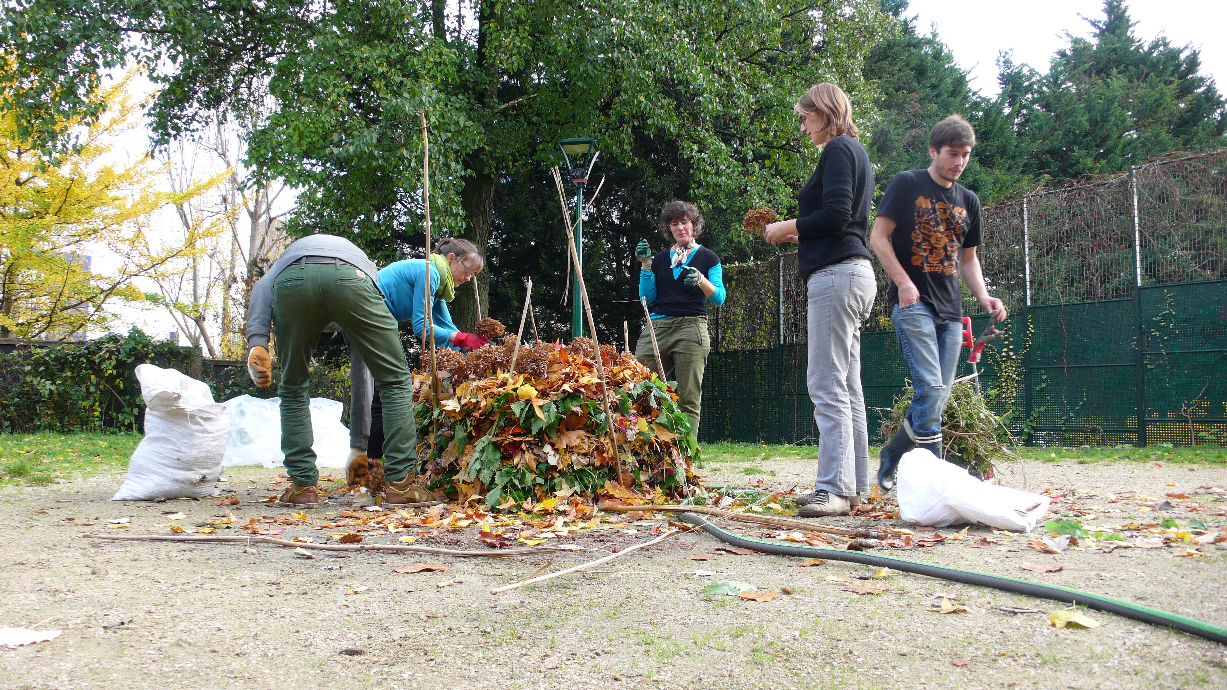 Compost De Feuilles D Érable composter, tout un art ! – pépins production